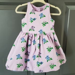 Janie and Jack party dress with tulle
